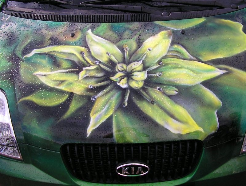 Пленка цветы на машину фото