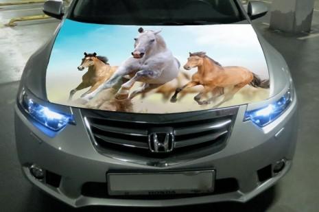 Наклейка на капоте: три лошади