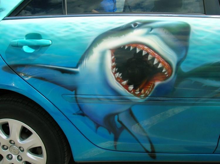 Аэрография акула